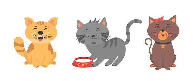 재생, 스트레칭 및 수면 귀여운 새끼 고양이