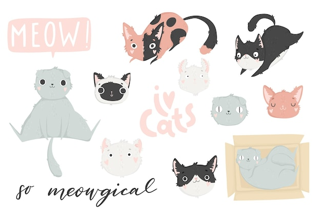 さまざまな猫の品種と手描きのレタリングで設定されたかわいい子猫のベクトル図
