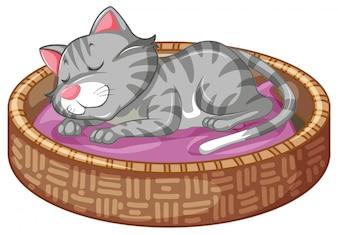 かごの中のかわいい子猫
