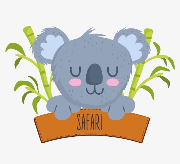 かわいいコアラとサファリのサイン