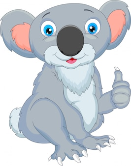 Cute koala cartoon thumbs up