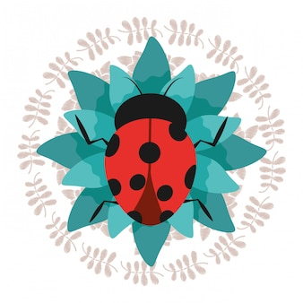 Cute ladybug on green flower with wreath decoration