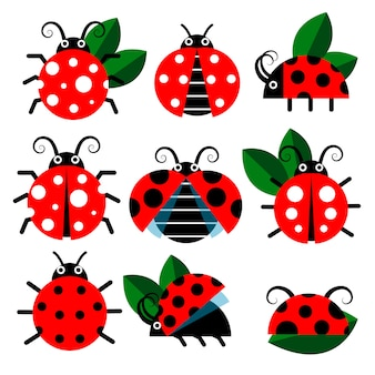 Cute ladybug icons. cartoon-style bugs and leaves