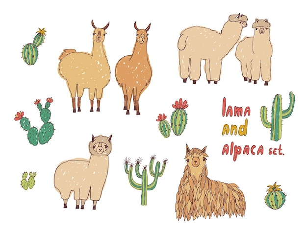 Cute lama, alpaca and cactuses set. hand drawn colorful illustration.