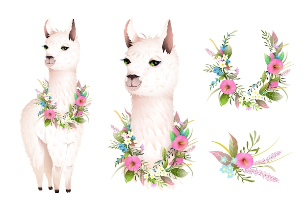 Cute lama realistic vector character design with wild flowers. artistic botanical bohemian animal design, hand drawn lama illustration clip art, vector design in watercolor style.