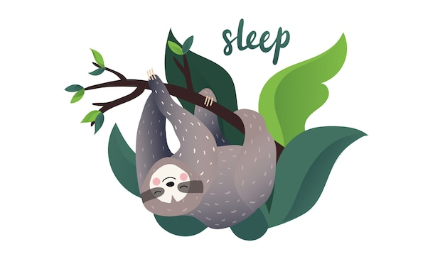 Cute lazy sloth sleeping on a branch of the tropical tree. sleep type lettering.cartoon style