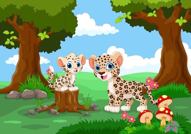 Милые леопарды в лесу