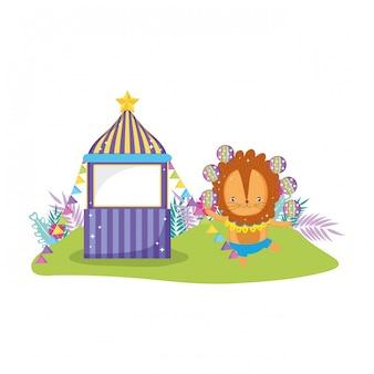 Cute lion circus in kiosk