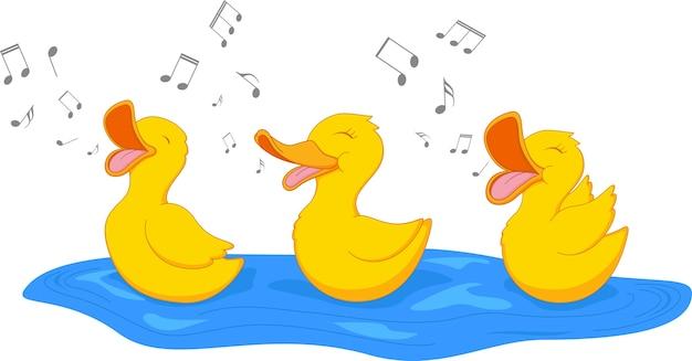 Cute litle duck singing