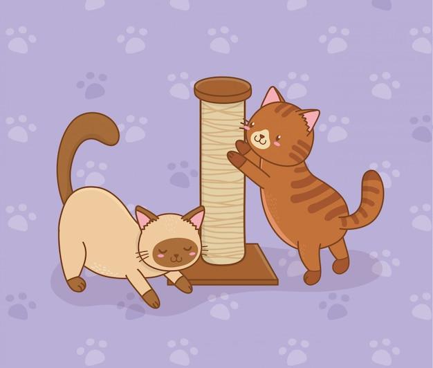 Cute little cats mascots characters