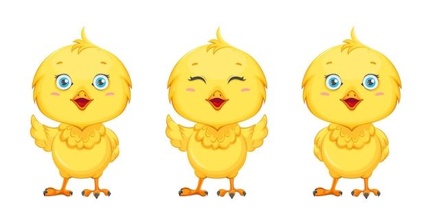 Милый цыпленок, набор из трех поз