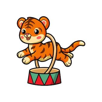 Милый маленький цирковой тигр прыгает через кольцо