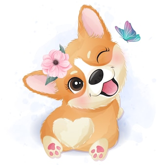 Cute little corgi play with butterfly