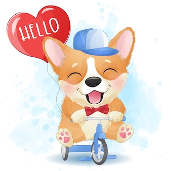 Cute little corgi riding a bicycle