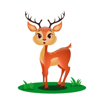 草の中のかわいい小さな鹿