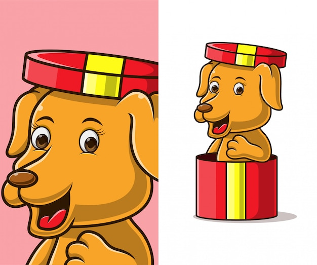 Cute little dog in a gift present. cute little dog cartoon character.
