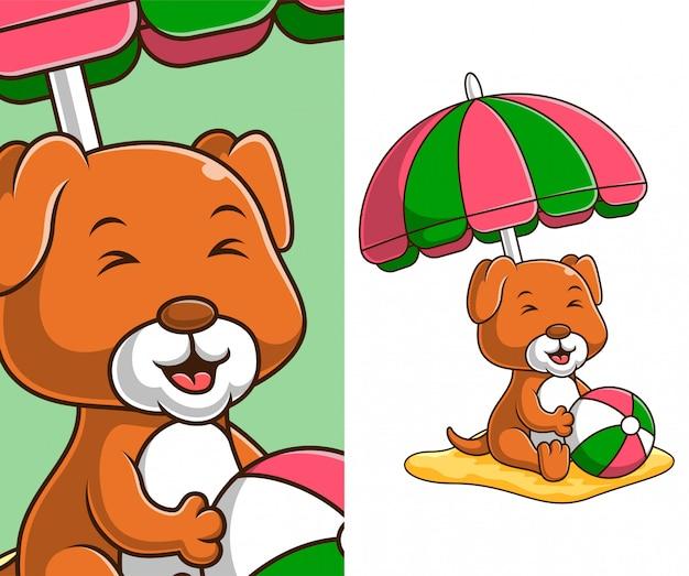 Милая маленькая собака отдыхает на пляже. милая маленькая собака мультипликационный персонаж. Premium векторы