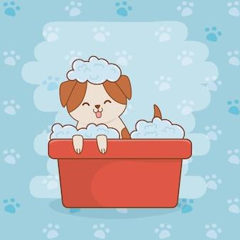 Cute little doggy mascot character