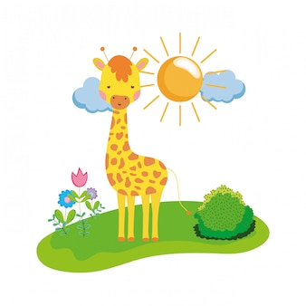 Cute and little giraffe character