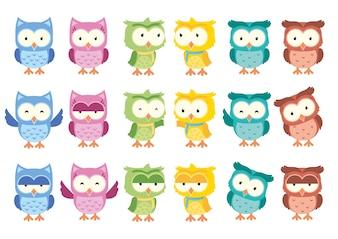 Cute Little Owl Cartoon Isolated Vector Set