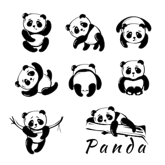 Cute little panda. set of 8 different poses.