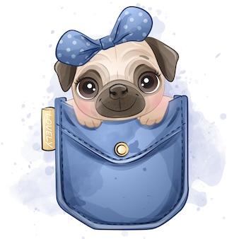 Милый маленький мопс сидит в кармане