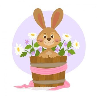 Cute little rabbit in bucket