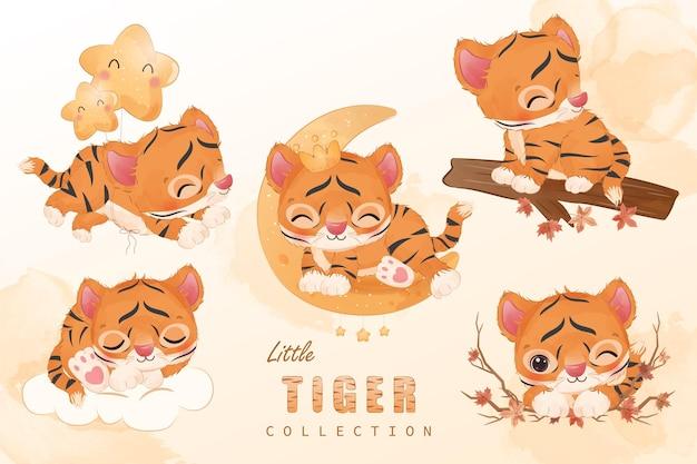 Симпатичная маленькая коллекция клипартов тигра в акварельной иллюстрации