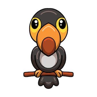 Cute little toucan cartoon on tree branch