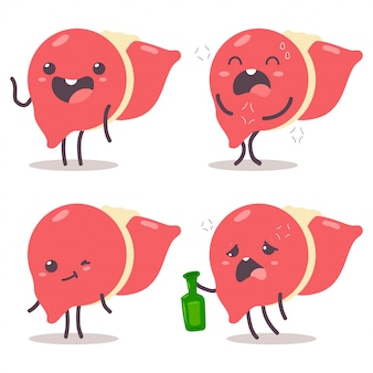 Cute liver vector cartoon characters set isolated.