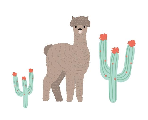 Cute llama or cria isolated on white