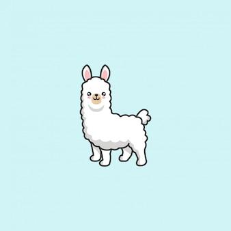 Cute llama vector