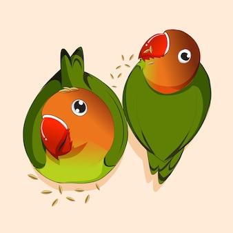 Cute love bird eating seed