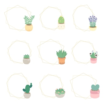 Cute luxury flat style cactus and succulent with geometric golden frame