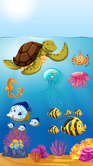 Cute marine animals underwater