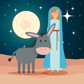 Cute mary virgin with mule on night