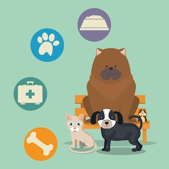 Pet Vectors, Photos and PSD files | Free Download
