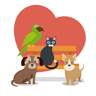 Cute mascots and pet shop icons