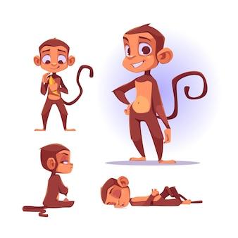 다른 포즈의 귀여운 원숭이 캐릭터. 만화 채팅 봇, 웃 고있는 재미있는 원숭이의 벡터 세트