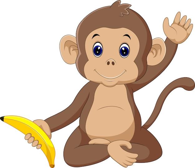 Cute monkey holding banana