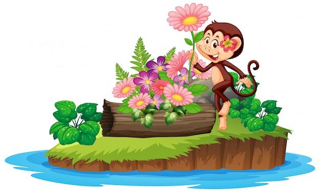 Милая обезьяна в цветочном саду на острове