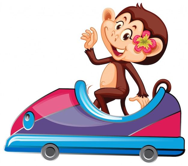 Scimmia carina cavalcando auto giocattolo