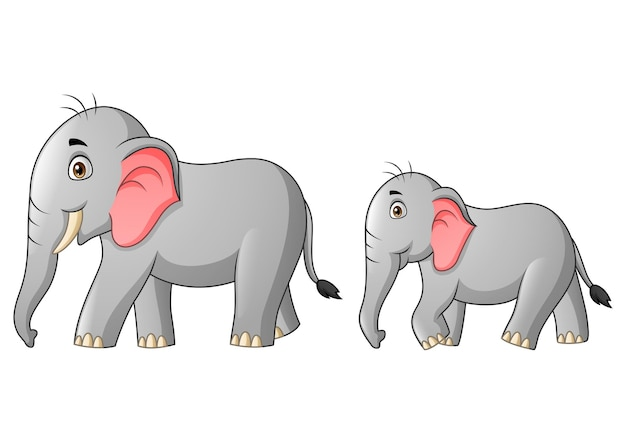 Cute mother and child elephant cartoon   illustration