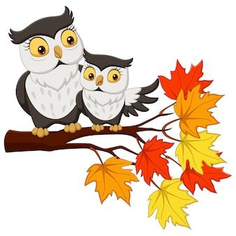 Милый мультфильм мать сова и ребенок на ветвях деревьев