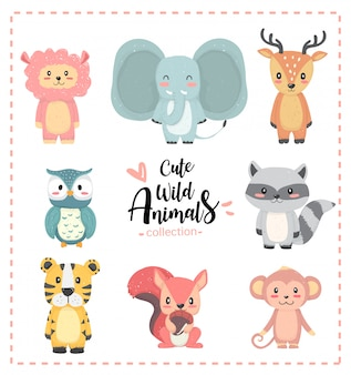 Cute nursery wild animal pastel hand drawn collection, llama, elephant, reindeer, owl, raccon, tiger, squirrel, monkey