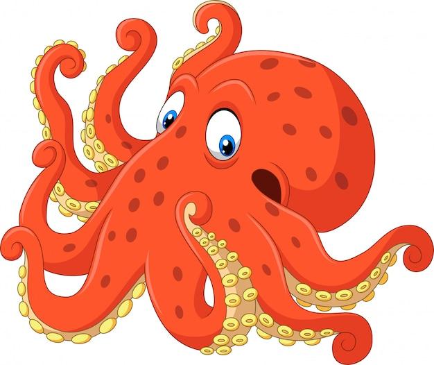 Cute octopus cartoon on white