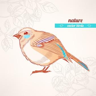 Милая оранжево-бирюзовая птица