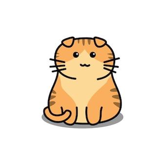 귀여운 오렌지 스코티시 폴드 고양이 만화 흰색 절연
