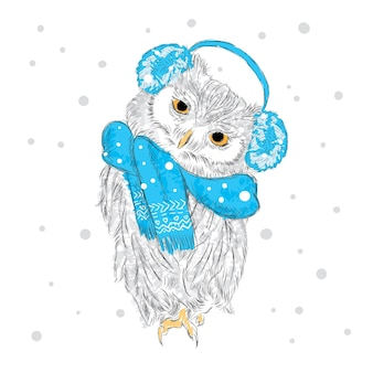 Cute owl in christmas clothes new year