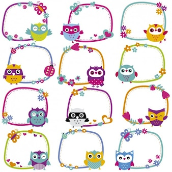 Cute owl frames collection